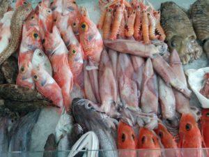 Fische auf dem Markt in Marsala