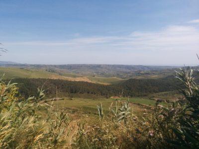 Hügelige Gegend auf dem Weg nach Gibellina Vecchia