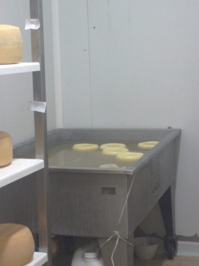 Salzbad für den Käse