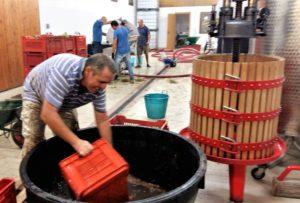 Cisterne in der die Trauben zerkleinert werden