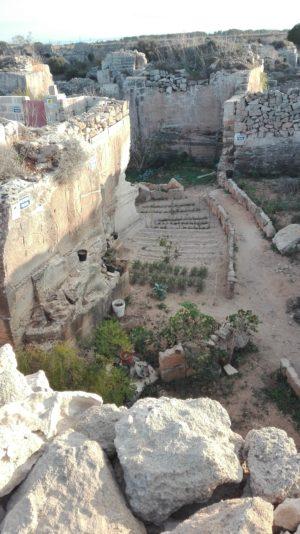 Garten in einem Steinbruch