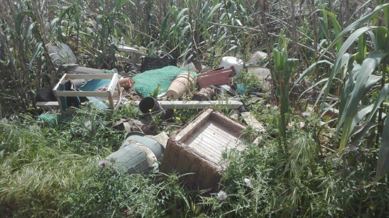 Müll in rauen Mengen wild abgelegt