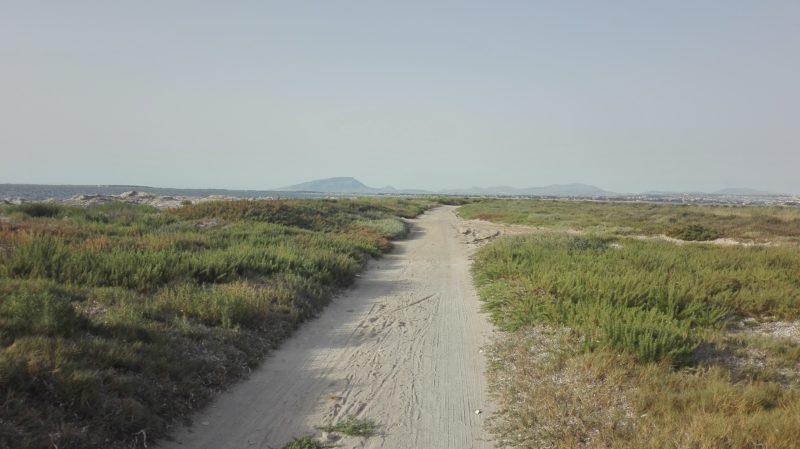 Täuschend ruhig, der Parco Salinella von Marsala